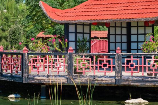 flora-garden-special-offers